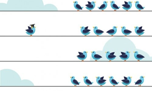 Independent thinker and individual leadership concept. Group of pigeon birds on a wire with one at the other side. Flat style vector illustration isolated on white background.